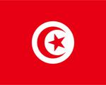 tunis_flag_s.jpg